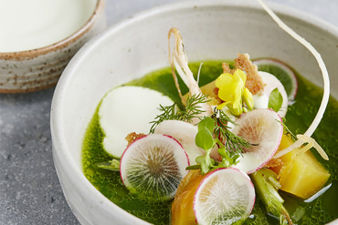 Mixed herb bouillon, yoghurt and radish